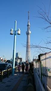 隅田川からスカイツリー